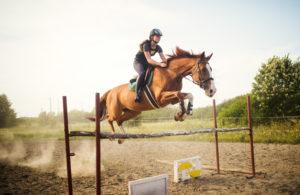 Anschaffung und Haltung eines Pferdes sind oft mit hohen Kosten verbunden.